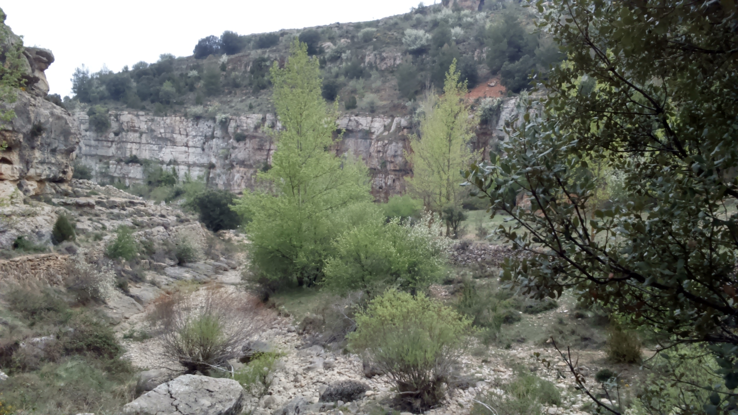 Sin categoría Archivos - Casa Rural Las Dalias